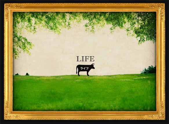 lifeplus.jpg